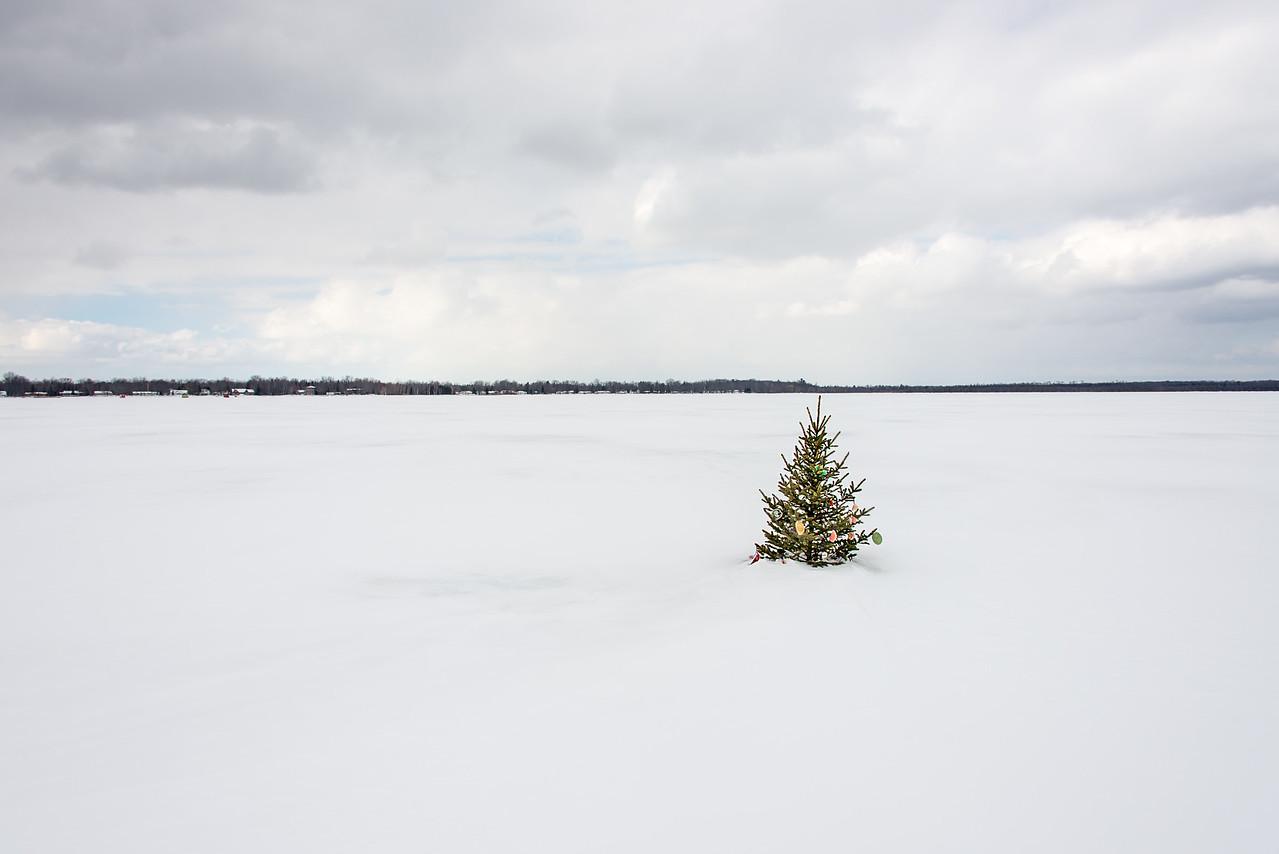 Christmas Tree on Black Lake, Michigan - March 4, 2016