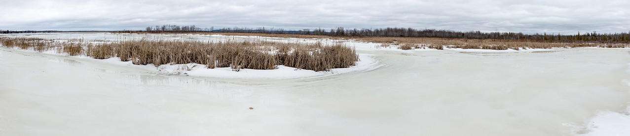 Panoramic of Cove from Dock - February 16, 2016