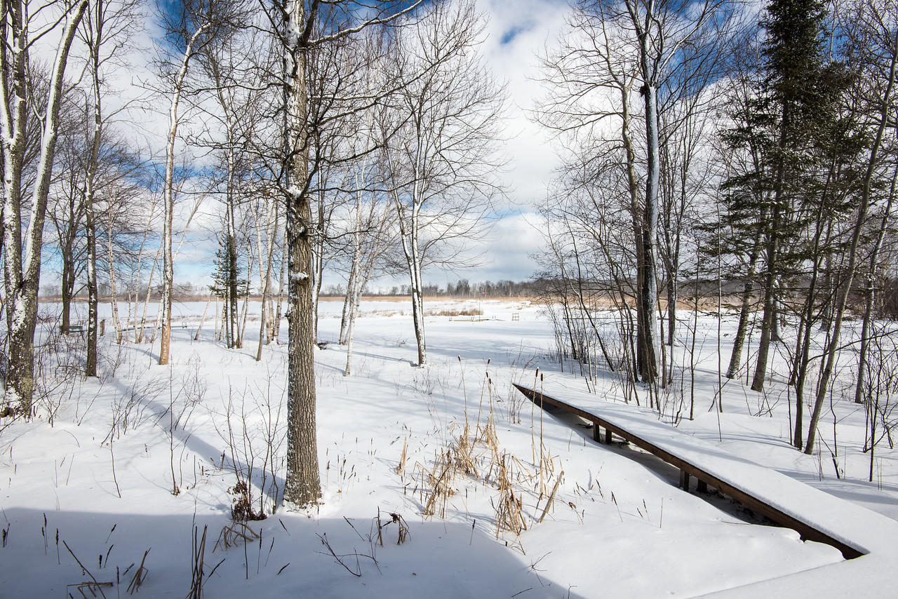 View from deck looking east across Black Lake  - February 29, 2016