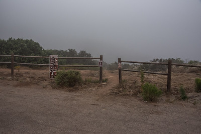 Miners Loop Foggy