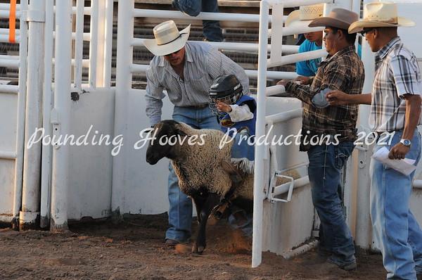 Bosque Farms Junior Rodeo Fall Series