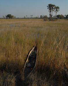 Mokoro. Okavango Delta, Botswana.