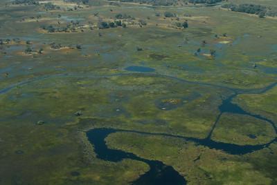 Okavango Delta, Botswana.