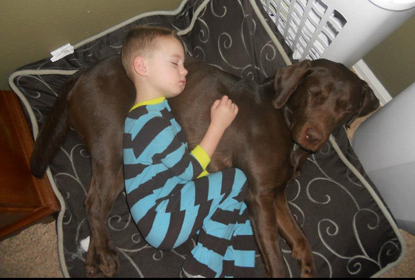 """This is what I woke up to this morning ... a boy and his best friend! Still not sure why he didn't call the dog to his room but hey, I guess the dog bed is a comfy place to sleep."""