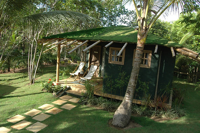 Grass roofs on chalets at Butterfly House.