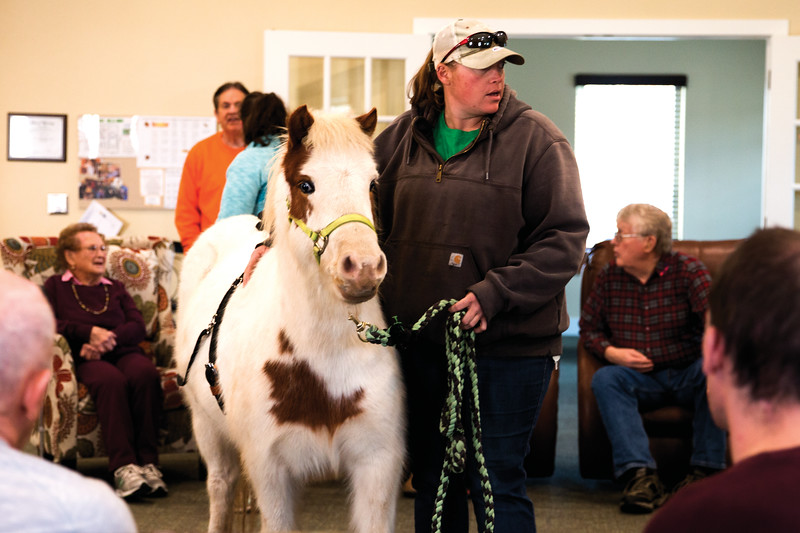 Matthew Gaston | The Sheridan Press<br>CHAPS Equine barn manager Gina Marchese center leads therapy pony Feather into The Hub for Daybreak Thursday, Nov. 15, 2018.