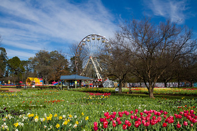 Floriade 2016, Canberra