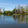 Lake Burley Griffin in Spring, Canberra