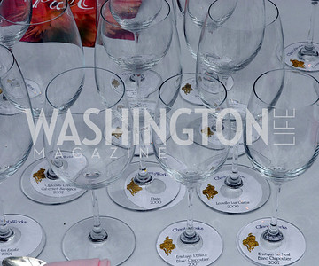 Charity Works 100 Point Wine Tasting, May 14, 2011, Kyle Samperton