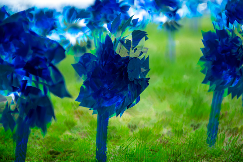 Matthew Gaston | The Sheridan Press<br>A close up of a multiple exposure of the 1,000 pinwheels planted in the lawn at Sheridan High School to raise awareness for child abuse prevention Wednesday, April 24, 2019.