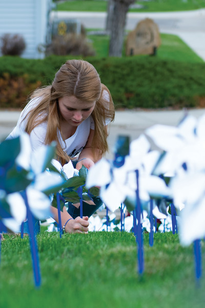 Matthew Gaston | The Sheridan Press<br>Sheridan High School freshman Aubrey Cooper plants a pinwheels along side some of her classmates to raise awareness for child abuse prevention Wednesday, April 24, 2019.