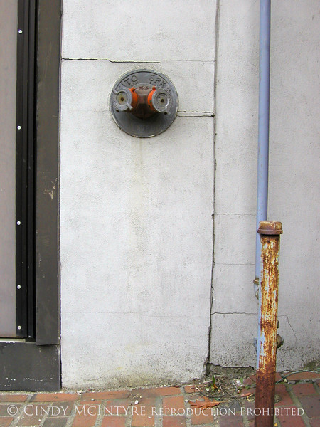 Auto Sprinkler and Blue Pole copy