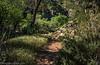 20150331Cedar Creek Falls_DSC5933-Edit