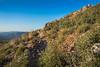 20150829_DSC5213-EditGarnet Peak