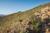 20150829_DSC5205-EditGarnet Peak