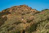 20150829_DSC5214-EditGarnet Peak