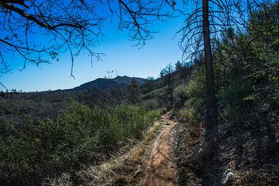 20150208Noble Canyon_DSC2904-Edit
