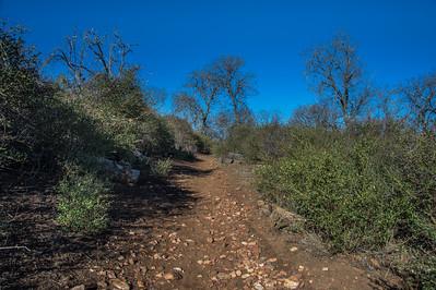 20150208Noble Canyon_DSC2892-Edit