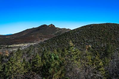 20150208Noble Canyon_DSC2898-Edit