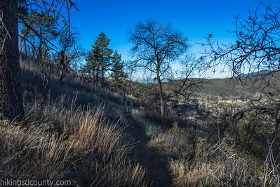20150208Noble Canyon_DSC2910-Edit