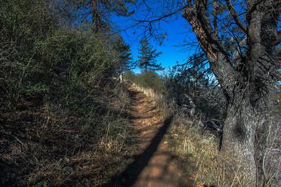 20150208Noble Canyon_DSC2903-Edit