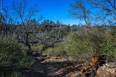 20150208Noble Canyon_DSC2893-Edit