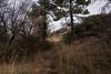 2016Sunset Trail-DSC_3374-2