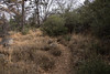 2016Sunset Trail-DSC_3370-2