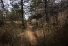 2016Sunset Trail-DSC_3377-2