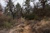 2016Sunset Trail-DSC_3372-2