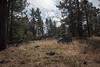 2016Sunset Trail-DSC_3486-2