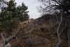 2016Sunset Trail-DSC_3376-2