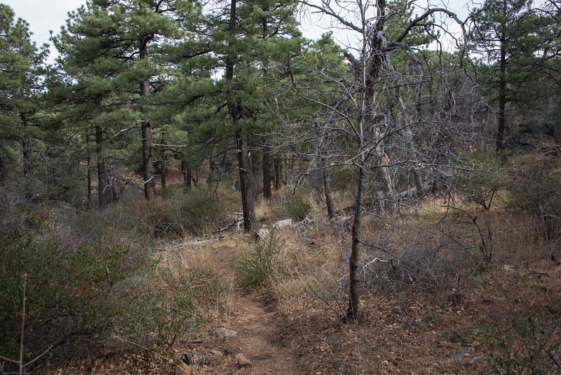 2016Sunset Trail-DSC_3361-2