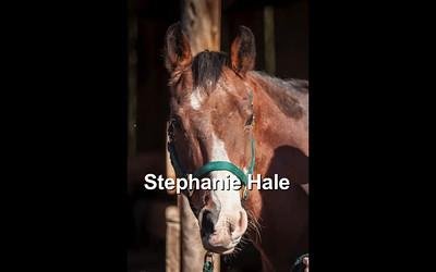 Stephanie Hale-HD (1080p)
