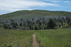 20160414Harvey Moore Trail3228