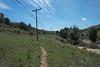 20160414Harvey Moore Trail3225