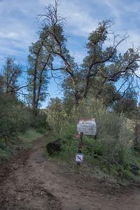 20160414Harvey Moore Trail-3