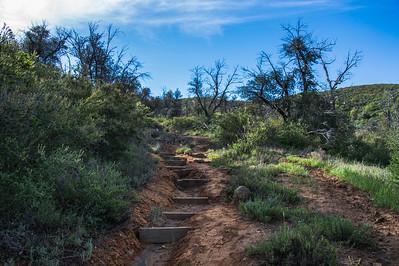 20160414Harvey Moore Trail