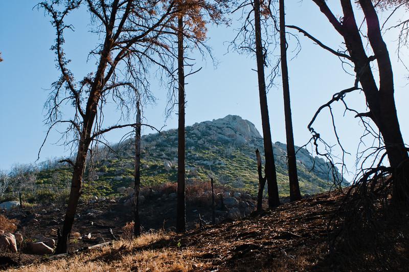 Stonewall Peak-4779