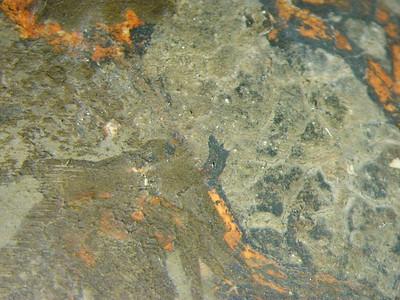 Zwischenzustand: Hegner Altar, Nikolaus, Gewand, roter Bolus und oxidierter Silber mit grünem Überzug AAF_0022_01-01-1999