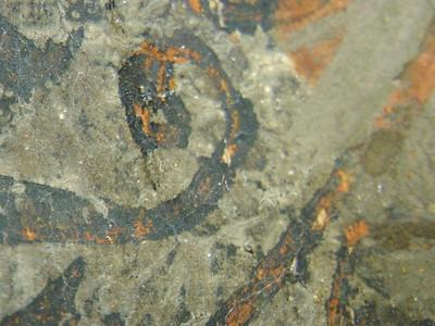 Zwischenzustand: Hegner Altar, Nikolaus, Gewand, roter Bolus und oxidierter Silber mit grünem Überzug AAF_0023_01-01-1999