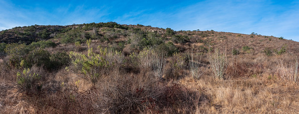 2017DictionaryHillView-_DSC9266-Pano-Edit