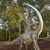 Roaming dinosaurs at Canberra Botanical Gardens