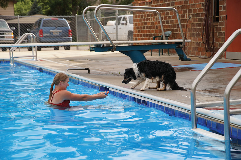 Matthew Gaston | The Sheridan Press<br>Betty Jerney coaxes her dog Lyra into the pool using her favorite toy as bait during the dog swim at Kendrick Pool Saturday, Aug. 24, 2019.