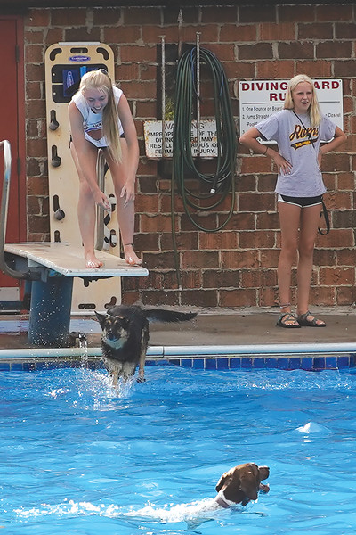 Matthew Gaston | The Sheridan Press<br>Kylee Lamb laughs as her dog Shotzy takes the plundge off the diving board at Kendrick Pool Saturday, Aug. 24, 2019.