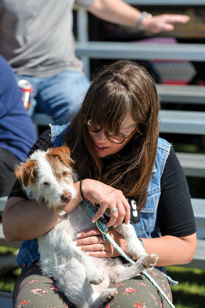 Ashleigh Fox | The Sheridan Press<br> Courtney Nicholson-Paine, who works at HF Bar Ranch, hugs Bubba the female jack russel terrier at the Big Horn Equestrian Center during Don King Days Sunday, Sept. 2, 2018.