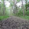 Footprints and mud.