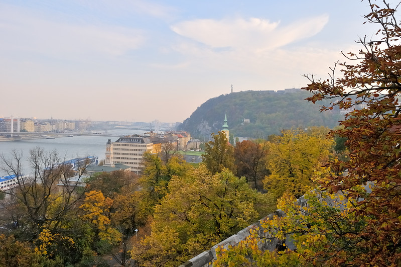 Danube view -  Buda Castle