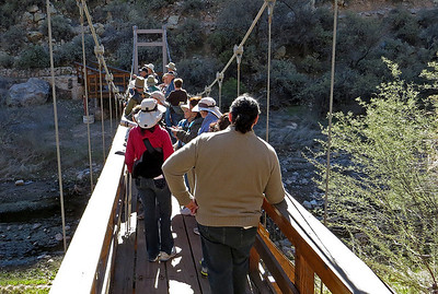 El Paso Audubon group on Boyce Thompson suspension bridge.