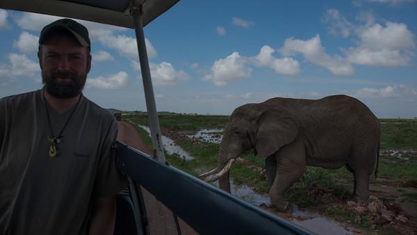 Eric with Savanna Elephant, Loxodonta africana. Amboseli, Kenya.